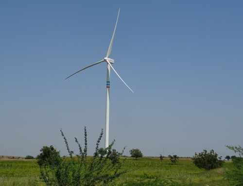 Suzlon and India are facing at least a year of low growth in wind power
