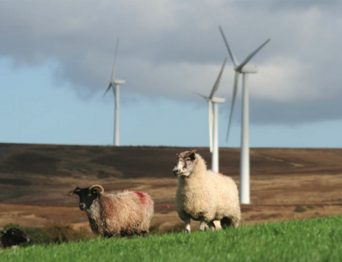 Greencoat UK Wind reports another good year but continues to ignore future risks to its profitability