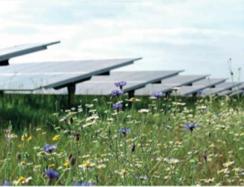 NextEnergy Solar Fund Annual Results