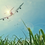 Easyjet and Emission offset