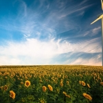 Renewable energy is making rapid inroads into the market, but fossil fuels still wield enormous global influence.