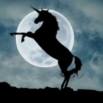 Where are the unicorns in the clean energy business?