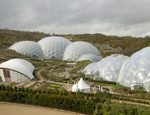 Biome Technologies' Bioplastics Division diversifies into biodegradable tree shelters